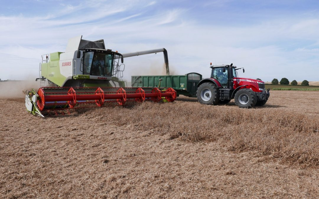Agricultor inglés bate record del mundo de cultivo de guisantes gracias a eCoCulture