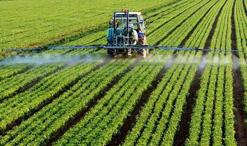 EcoCulture Biosciences revoluciona el manejo de la fertilización nitrogenada con su tecnología NHDelta.