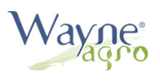 Wayne Agro