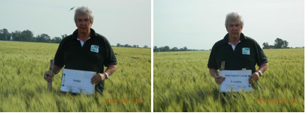 NHDeltaCa + 1-4-All had a dramatic effect on increasing total wheat yield 14 -25% in Argentina