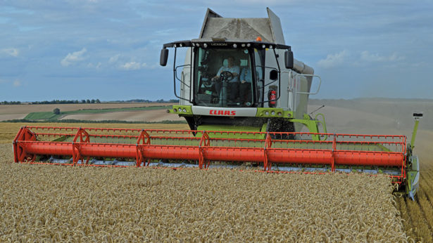 Lincs grower sees hat-trick in top wheat yield competition using eCoCulture programme