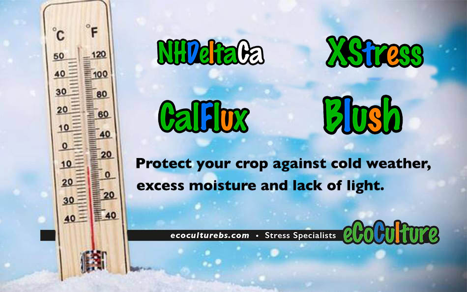 Protection of crops against cold and frost