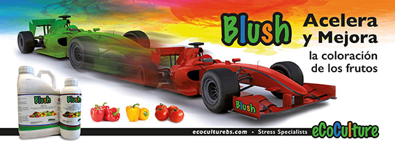 Blush speeds up and improves coloration in red and yellow pepper.