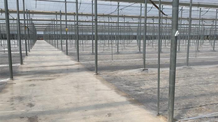 SLICK, La nueva solución de Ecoculture que aumenta la eficacia de la desinfección de suelos agrícolas