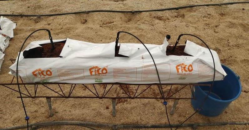 Slick de Ecoculture reduce en un 28% las pérdidas de agua en el drenaje con una única aplicación en sustrato artificial de fibra de coco.