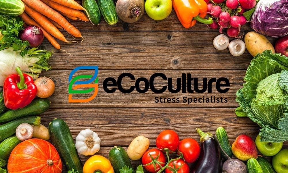 Ecoculture Biosciences recomienda el consumo de frutos rojos, tomate y pimiento, aliados de la salud