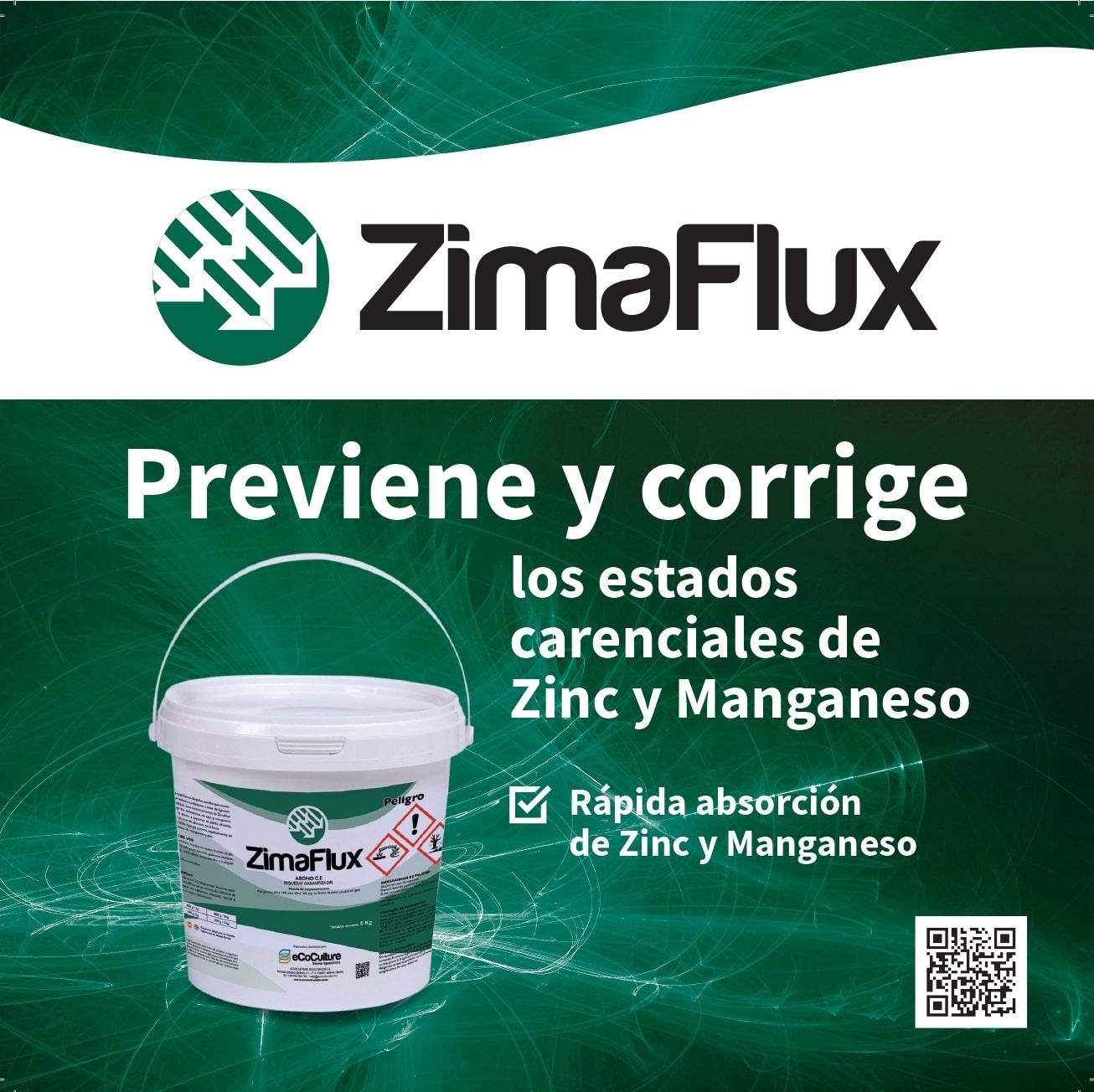 ZimaFlux